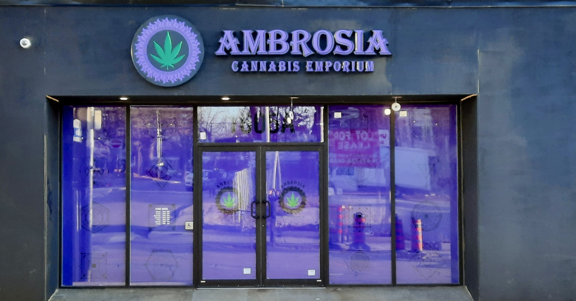 Ambrosia Channel letter signs by Signarama Toronto