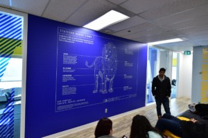 Stafford House Intl Wall Graphics