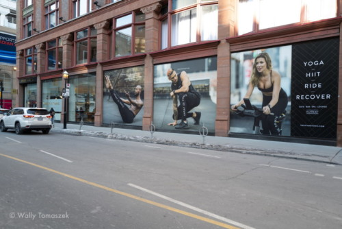 Window graphics by Sign A Rama Toronto